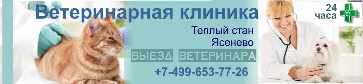 Ветеринарная клиника Теплый Стан +7-499-653-77-26